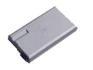 PCGA-BP1N